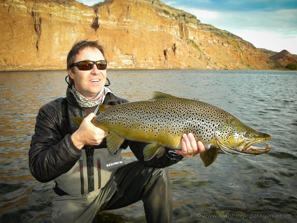 a huge trophy brown trout from the midlle limay